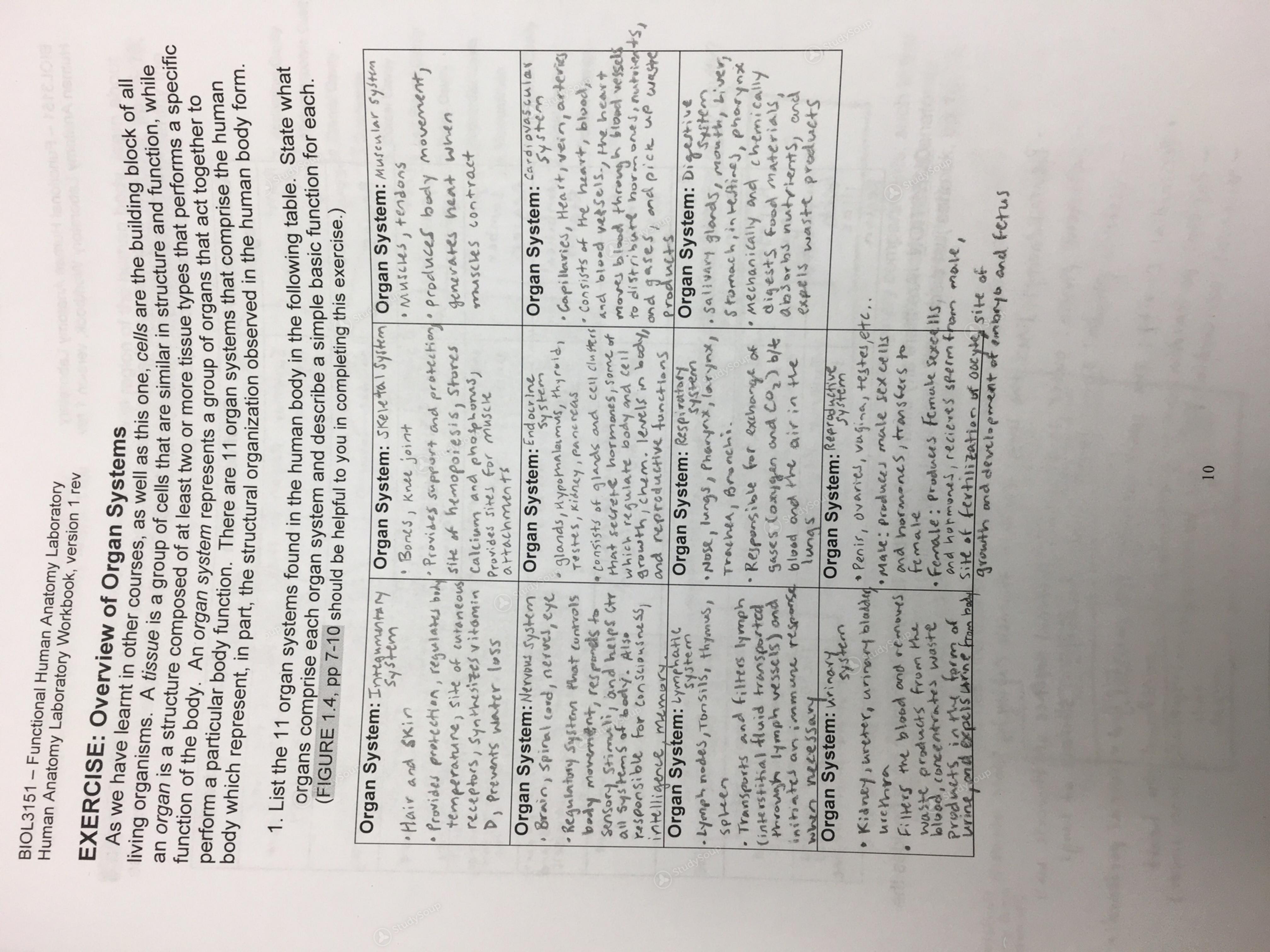 Clemson Micr 3150 Class Notes Pre Labex 1 Studysoup