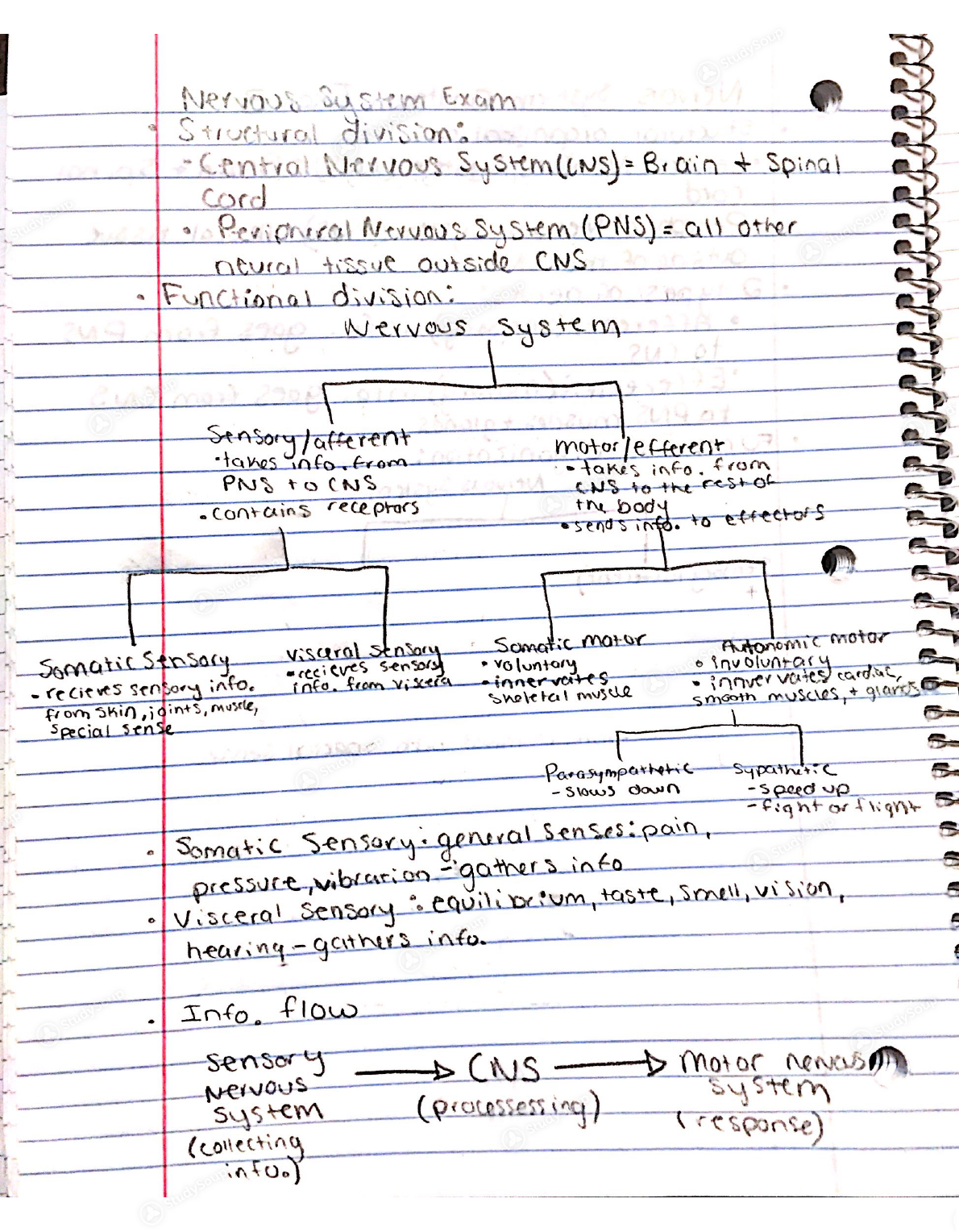 study guide for central system
