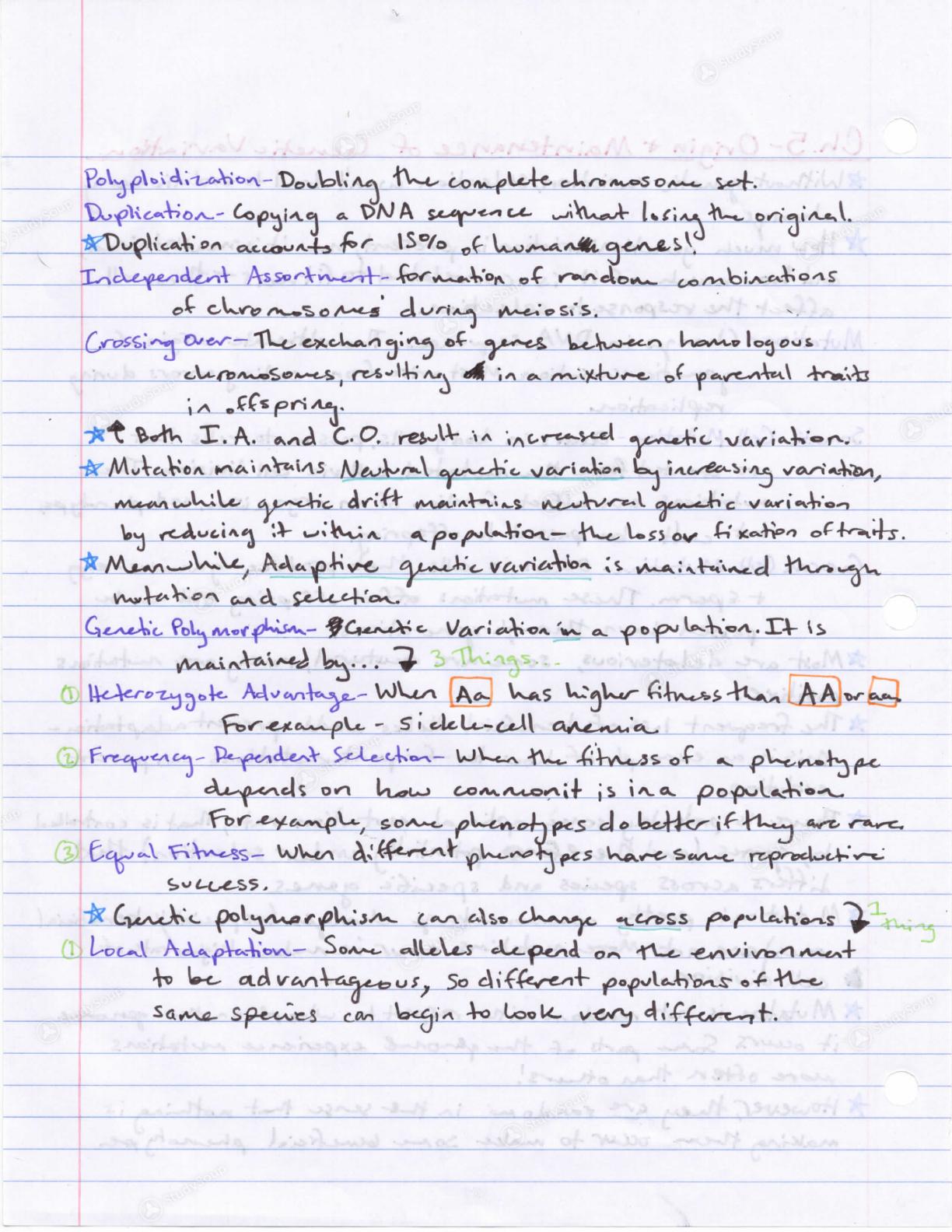 UTC - BIOL 3350 - Evolution Exam 2 Study Guide - Study Guide