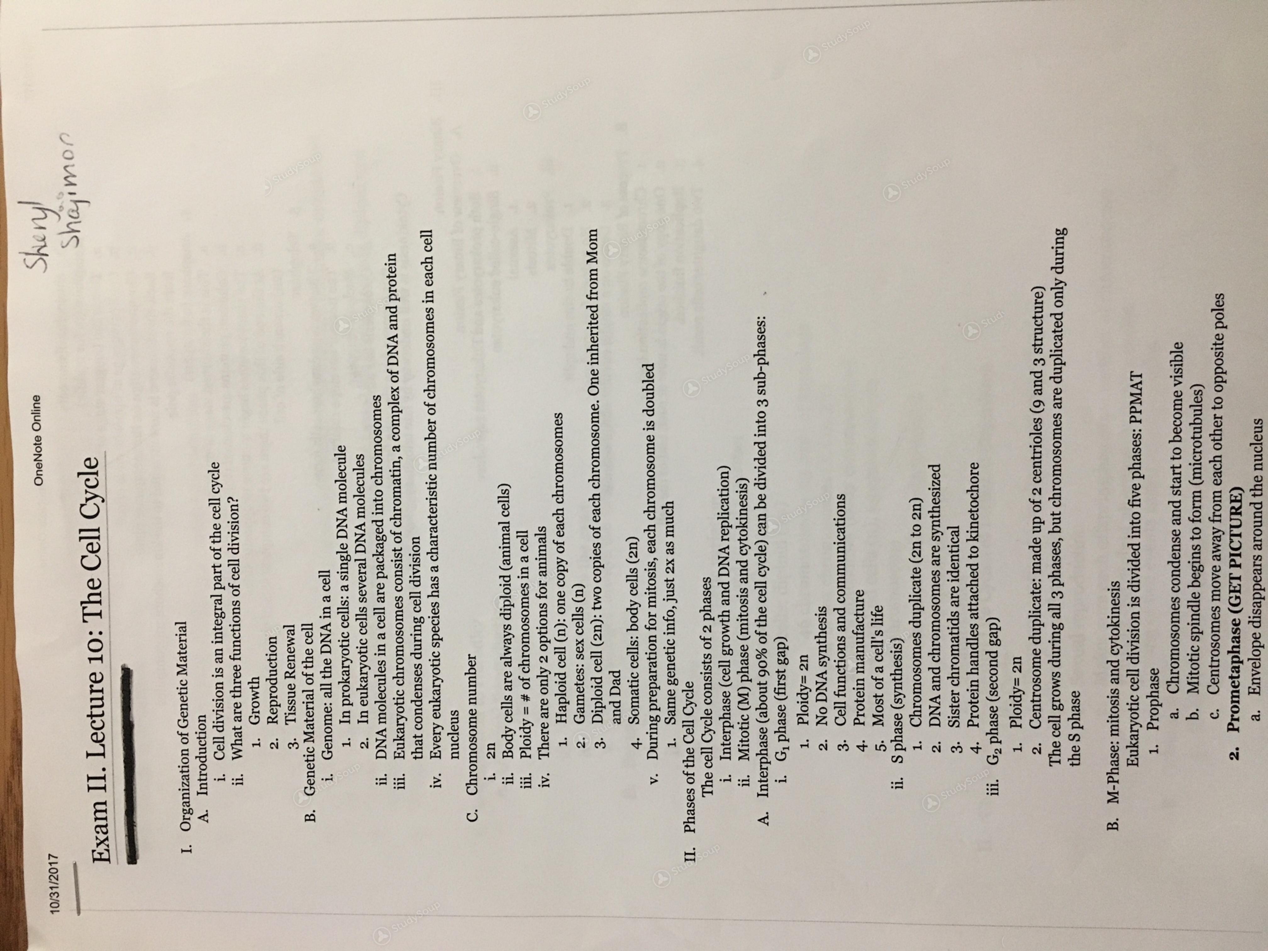 Rutgers - BIOL 119 - Biology Exam 2 Notes - Study Guide | StudySoup