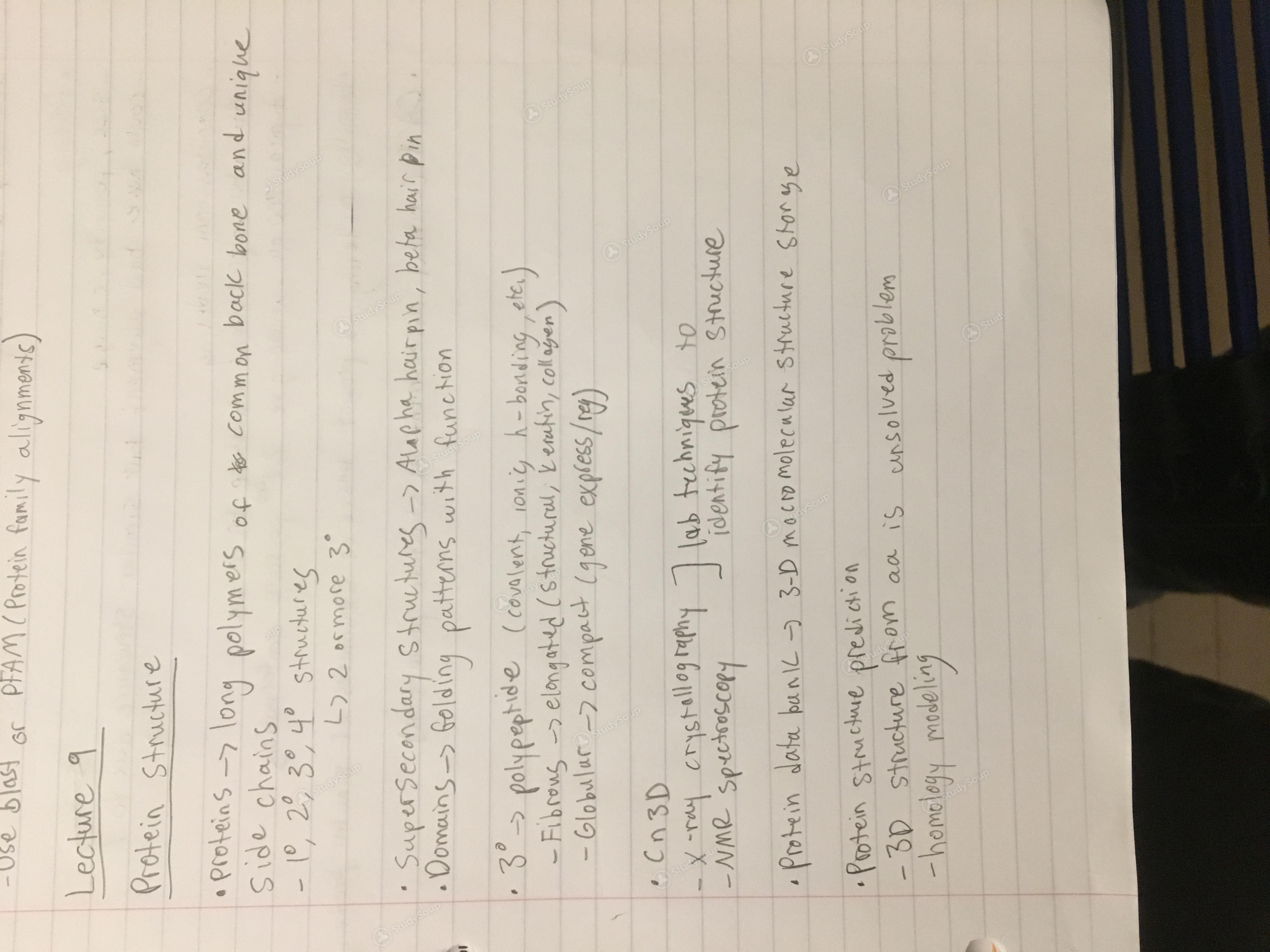 Towson - MBBB 301 - Class Notes - Week 11 | StudySoup